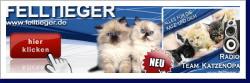 KatzenOpa Neue Website