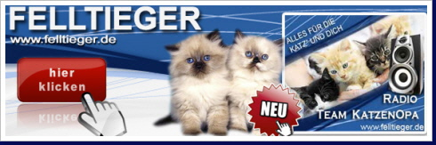 KatzenOpa Nachrichten Link